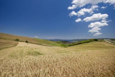 xalkidiki-landscape